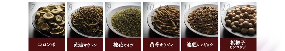 コロンボ / 黄連(オウレン) / 槐花(カイカ) / 黄芩(オウゴン) / 連翹(レンギョウ) / 梹榔子(ビンロウジ)