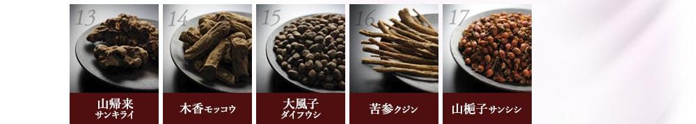 山帰来(サンキライ) / 木香(モッコウ) / 大風子(ダイフウシ) / 苦参(クジン) / 山梔子(サンシシ)
